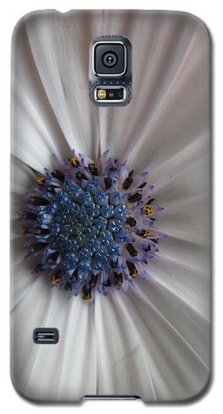 Blue-white Loveliness Galaxy S5 Case