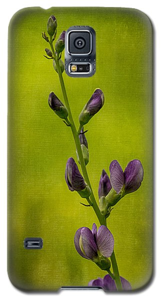 Blue Wild Indigo With Textures Galaxy S5 Case
