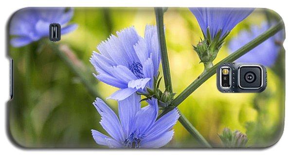 Blue Wildflwer Galaxy S5 Case