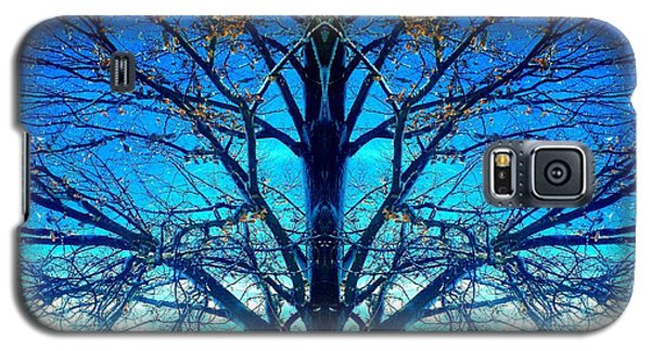 Galaxy S5 Case featuring the photograph Blue Winter Tree by Marianne Dow