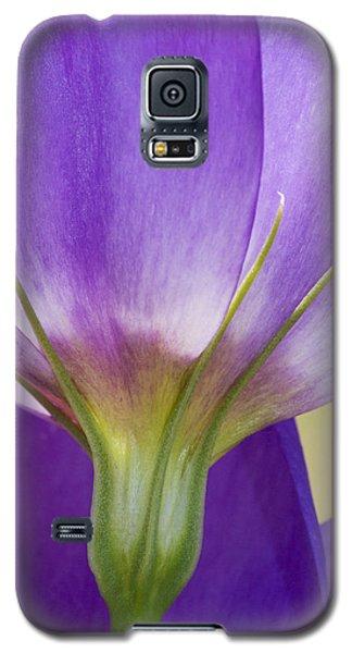 Bluebell Gentian Flower Galaxy S5 Case