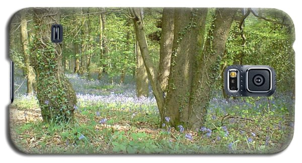 Bluebell Wood Galaxy S5 Case by John Williams