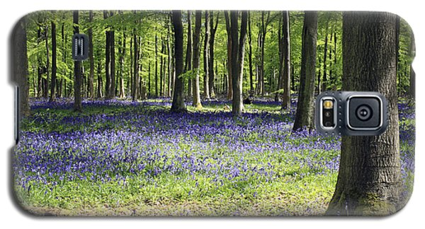 Bluebell Wood Uk Galaxy S5 Case