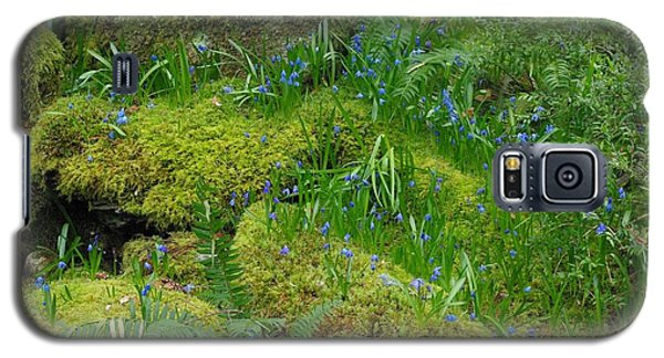Galaxy S5 Case featuring the photograph Bluebells  by Marilyn Wilson