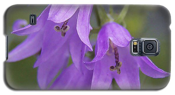 Galaxy S5 Case featuring the photograph Bluebells by Susan Crossman Buscho