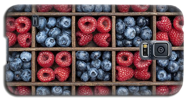 Blueberries And Raspberries  Galaxy S5 Case by Tim Gainey