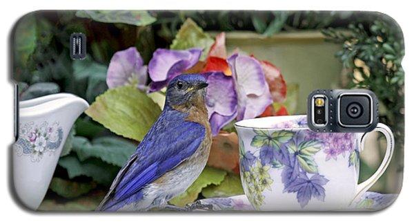Bluebird And Tea Cups Galaxy S5 Case