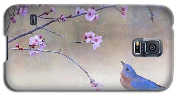 Bluebird And Plum Blossoms Galaxy S5 Case
