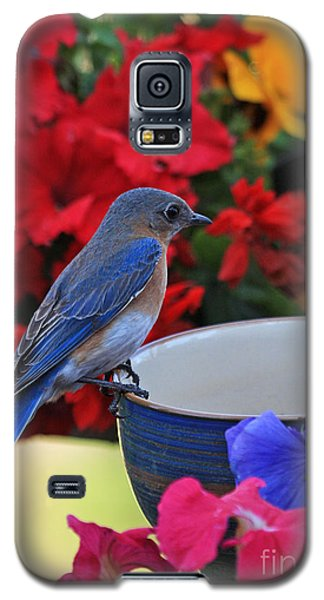 Bluebird Breakfast Galaxy S5 Case by Luana K Perez