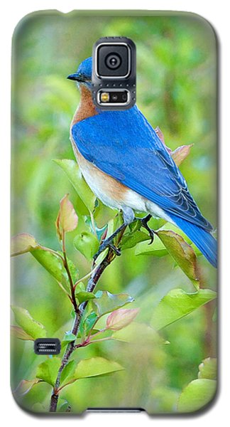 Bluebird Joy Galaxy S5 Case