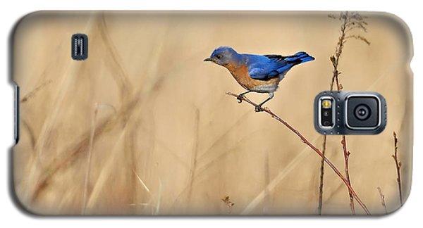 Bluebird Meadow Galaxy S5 Case