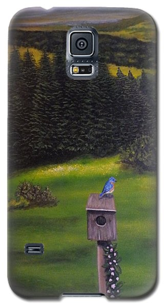 Bluebird On A Birdhouse Galaxy S5 Case