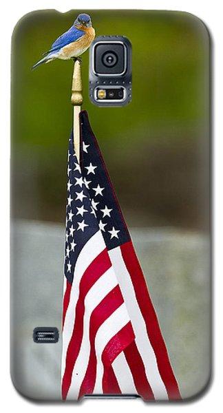 Bluebird Perched On American Flag Galaxy S5 Case