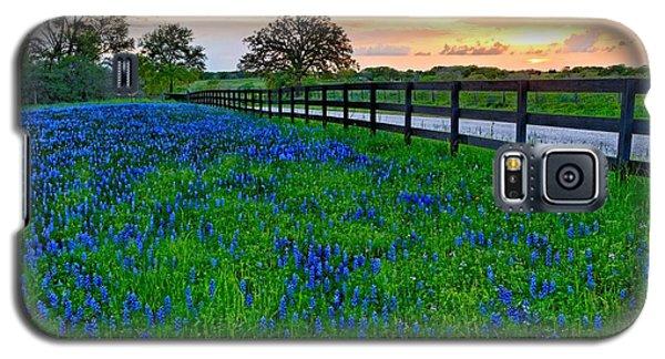 Bluebonnet Fields Forever Brenham Texas Galaxy S5 Case