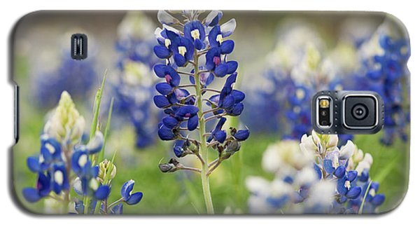 Galaxy S5 Case featuring the photograph Bluebonnets by John Maffei