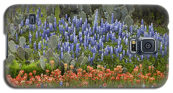 Bluebonnets Paintbrush And Prickly Pear Galaxy S5 Case