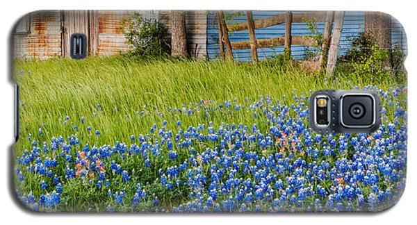 Bluebonnets Swaying Gently In The Wind - Brenham Texas Galaxy S5 Case
