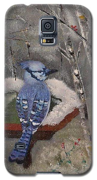 Bluejay Galaxy S5 Case