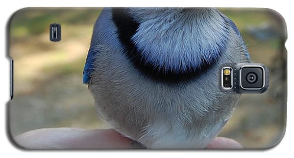 Galaxy S5 Case featuring the photograph Bluejay by Mim White
