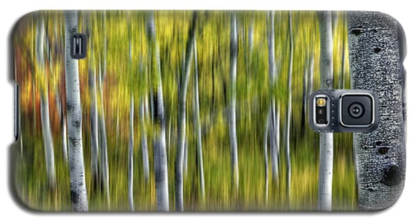 Blurred Aspens Galaxy S5 Case