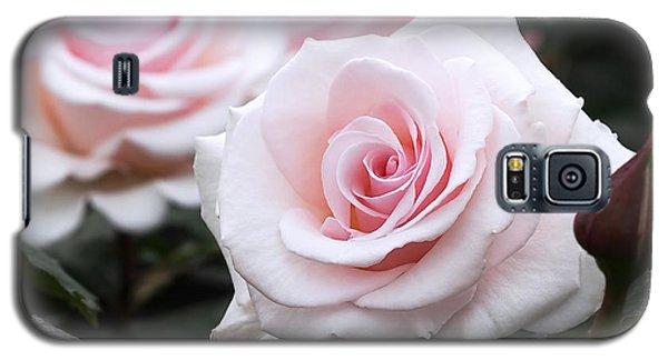 Blush Pink Roses Galaxy S5 Case