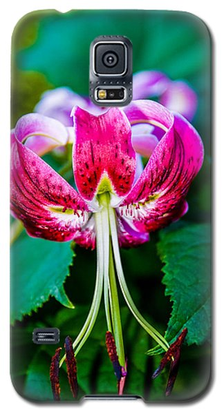Galaxy S5 Case featuring the photograph Blushing by Mary Timman