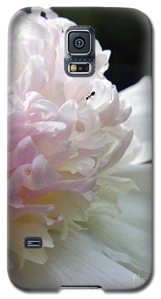 Blushing Peony  Galaxy S5 Case by Lilliana Mendez