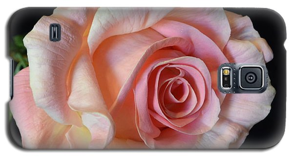 Galaxy S5 Case featuring the photograph Blushing Pink Rose by Jeannie Rhode