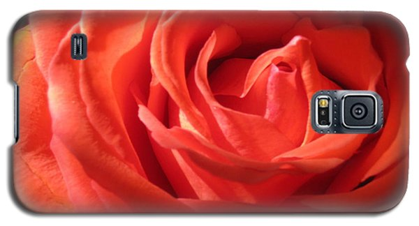 Blushing Orange Rose 1 Galaxy S5 Case