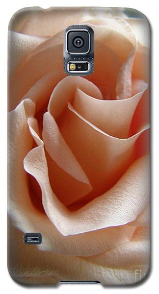 Galaxy S5 Case featuring the photograph Blushing Rose by Margie Amberge