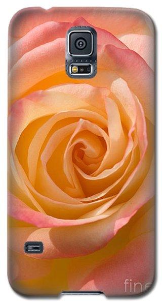 Blushing Rose Galaxy S5 Case