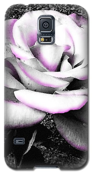 Galaxy S5 Case featuring the photograph Blushing White Rose by Shawna Rowe