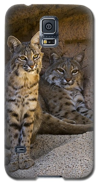 Galaxy S5 Case featuring the photograph Bobcat 8 by Arterra Picture Library