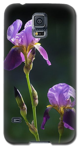 Bold And Beautiful Galaxy S5 Case