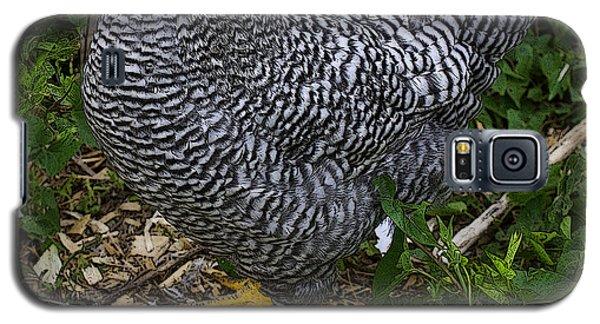 Bon Appetit Galaxy S5 Case by Diane E Berry