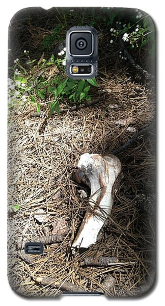 Bone Galaxy S5 Case
