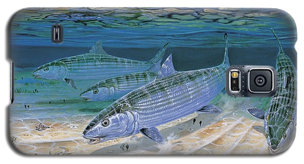 Parrot Galaxy S5 Case - Bonefish Flats In002 by Carey Chen
