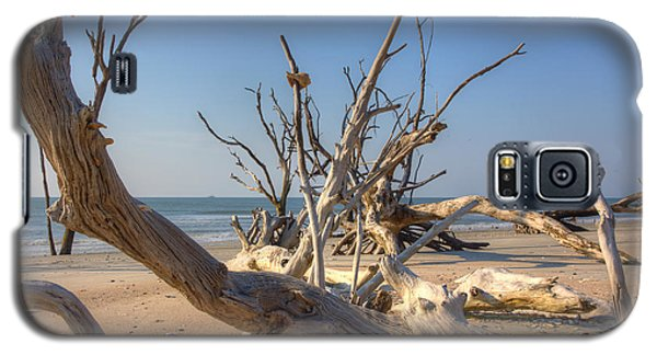 Galaxy S5 Case featuring the photograph Boneyard Beach by Patricia Schaefer