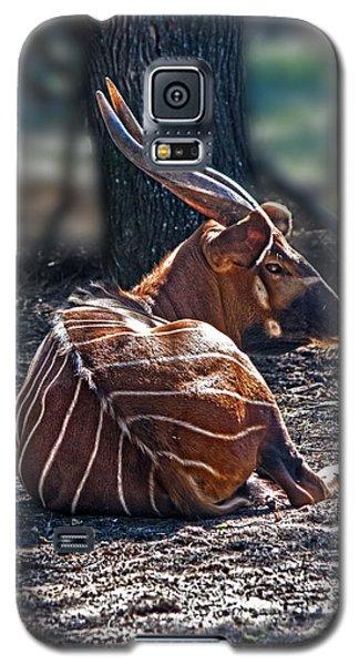Bongo Galaxy S5 Case