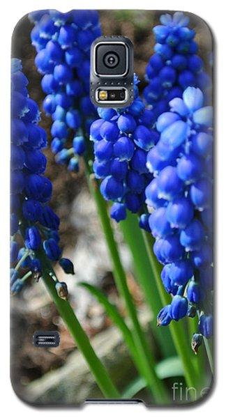 Bonny Blue Galaxy S5 Case
