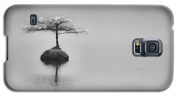 Bonsai At Fairy Lake Galaxy S5 Case