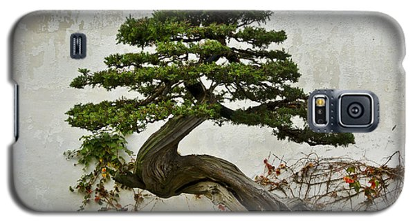 Bonsai Suzhou China Galaxy S5 Case