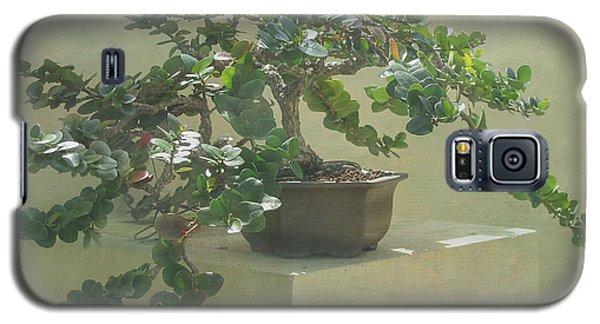 Bonsai Tree Galaxy S5 Case