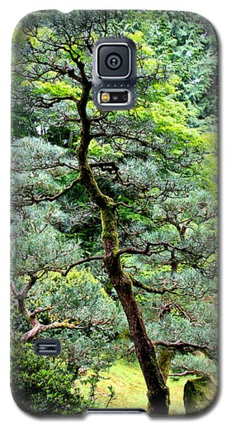 Bonsai Tree Galaxy S5 Case by Athena Mckinzie