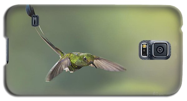 Galaxy S5 Case featuring the photograph Booted Racket-tail Hummingbird by Dan Suzio