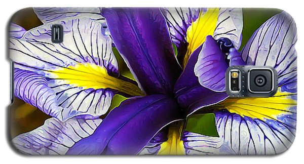 Galaxy S5 Case featuring the photograph Boothbay Beauty by ABeautifulSky Photography
