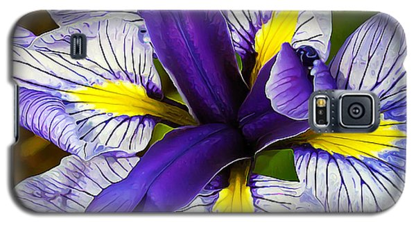 Boothbay Beauty Galaxy S5 Case by ABeautifulSky Photography