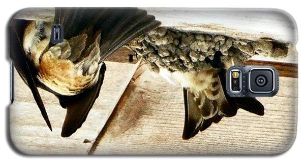 Bootom Side Of Feeding Galaxy S5 Case by Audrey Van Tassell