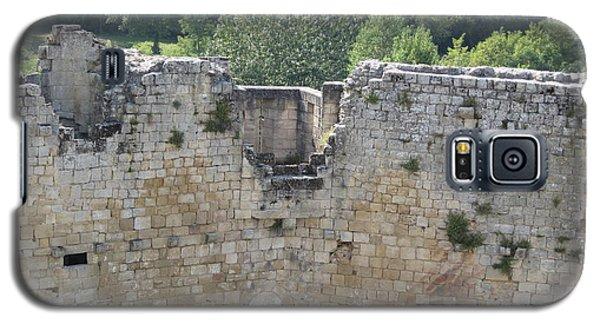 Bordeaux Castle Ruins With Vineyard Galaxy S5 Case