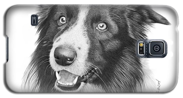 Border Collie -030 Galaxy S5 Case by Abbey Noelle